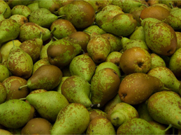 Peras - Pears